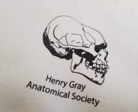 Anatomical Society